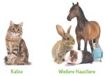 Alternativmedizin für Haustiere