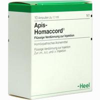 Apis Homaccord  Ampullen 10 Stück