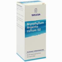 Bryophyllum Arg Cul D2  Dilution 50 ml