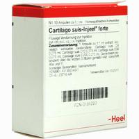 Cartilago Suis-injeel Forte Ampullen 10 Stück
