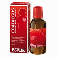 Abbildung von Crataegus Hevert Herzcomplex Tropfen 100 ml
