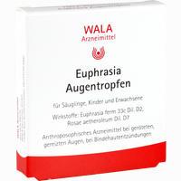 Abbildung von Euphrasia Augentropfen  5 x 0.5 ml