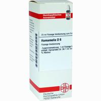 Hamamelis D6  Dilution 20 ML
