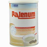 Abbildung von Palenum Cappucino Pulver 450 g