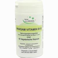 Pangam Vitamin B15 Kapseln 60 Stück