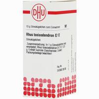 Abbildung von Rhus Toxicodendron D12 Globuli Dhu-arzneimittel 10 g