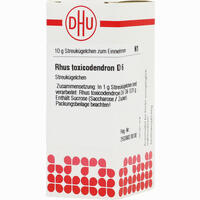 Rhus Toxicodendron D6  Globuli Dhu-arzneimittel 10 G