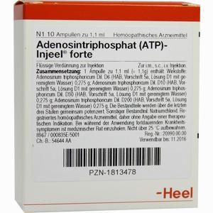 Abbildung von Adenosintriphosphat (atp)- Injeel Forte Ampullen  10 Stück