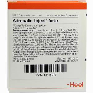 Abbildung von Adrenalin- Injeel Forte Ampullen  10 Stück