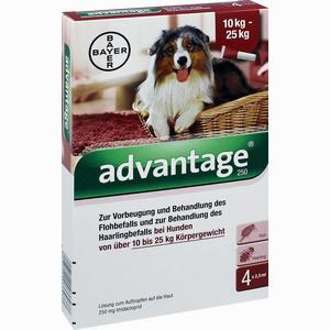 Abbildung von Advantage 250mg Lösung für Hunde  4 Stück