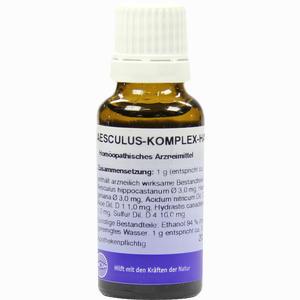 Abbildung von Aesculus Kompl  Fluid 20 ml