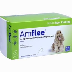 Abbildung von Amflee 134mg für Mittelgroße Hunde Lösung 6 Stück