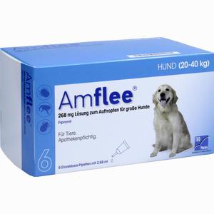 Abbildung von Amflee 268mg für Große Hunde Lösung 6 Stück
