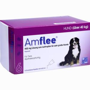 Abbildung von Amflee 402mg für Sehr Große Hunde Lösung 6 Stück