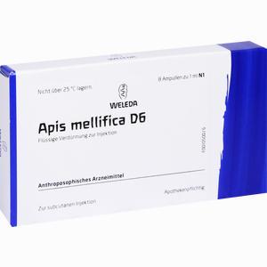 Abbildung von Apis Mellifica D6 Ampullen 8 Stück