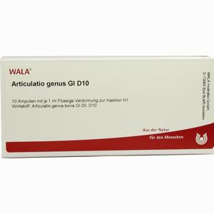 Abbildung von Articulatio Genus Gl D10 Ampullen 10 x 1 ml
