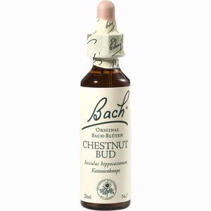 Abbildung von Bach- Blüte Chestnut Bud Tropfen 20 ml