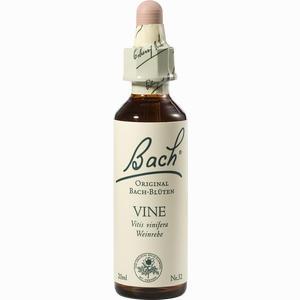 Abbildung von Bach- Blüte Vine Tropfen 20 ml