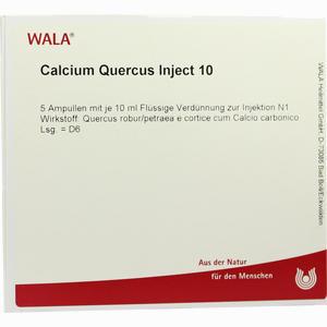 Abbildung von Calcium Quercus Inject 10 Ampullen 5 x 10 ml