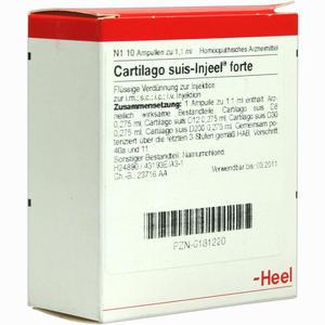 Abbildung von Cartilago Suis- Injeel Forte Ampullen 10 Stück