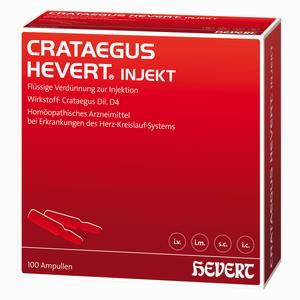 Abbildung von Crataegus Hevert Injekt Ampullen 100 Stück