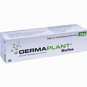 Abbildung von Dermaplant Salbe 75 g