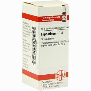 Abbildung von Euphorbium D4 Globuli 10 g