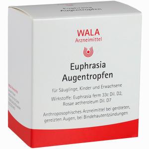 Abbildung von Euphrasia Augentropfen  30 x 0.5 ml