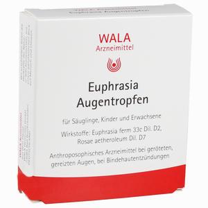 Abbildung von Euphrasia Augentropfen  10 x 0.5 ml