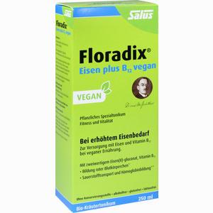 Abbildung von Floradix Eisen Plus B12 Vegan Tonikum 250 ml