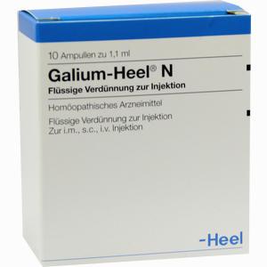 Abbildung von Galium- Heel N Ampullen 10 Stück