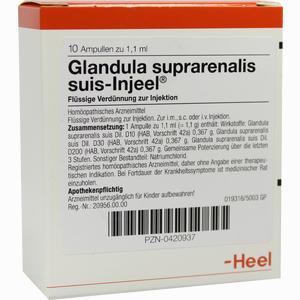 Abbildung von Glandula Suprarenalis Suis- Injeel Ampullen  10 Stück