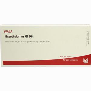 Abbildung von Hypothalamus Gl D6 Ampullen 10 x 1 ml