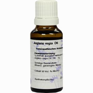 Abbildung von Juglans Regia D6 Dilution  20 ml