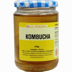 Abbildung von Kombucha Teepilz Hecht pharma 1 Stück