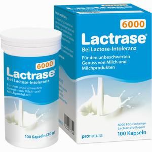 Abbildung von Lactrase 6000 Kapseln 100 Stück