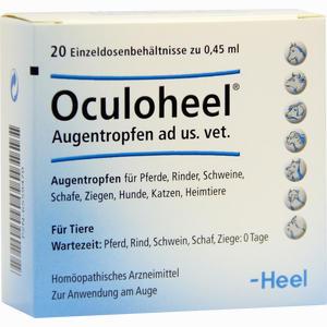 Abbildung von Oculoheel Augentropfen Ad Us. Vet. Einzeldosispipetten 20 Stück