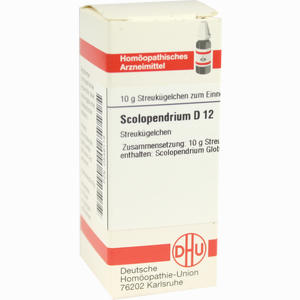 Abbildung von Scolopendrium D12 Globuli 10 g