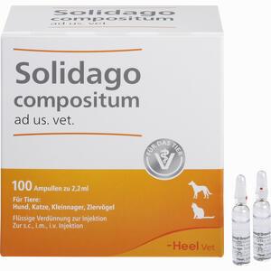 Abbildung von Solidago Compositum Ad Us. Vet. Ampullen 100 Stück