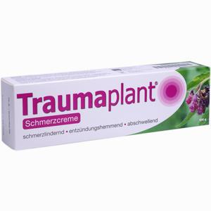 Abbildung von Traumaplant Schmerzcreme 100 g