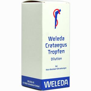 Abbildung von Weleda Crataegus Tropfen  100 ml