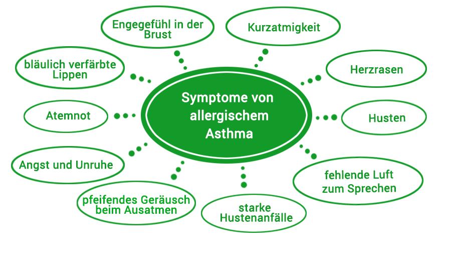 Symptome bei allergischem Asthma