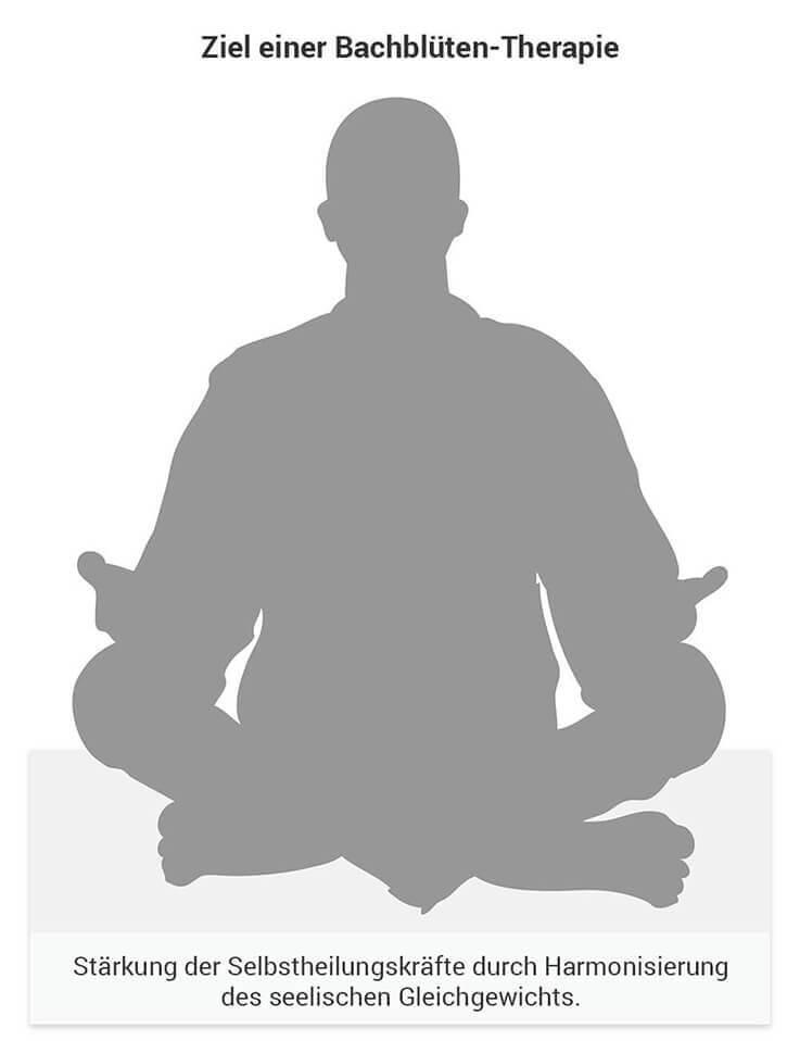 Ziel der Bachblüten-Therapie ist das seelische Gleichgewicht